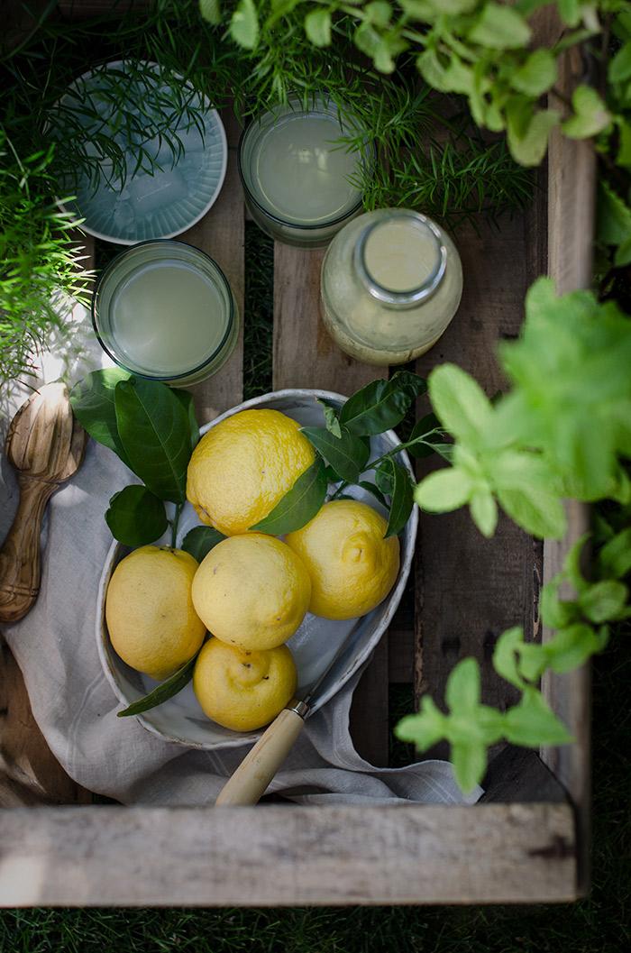 Limonada-en-el-jardin