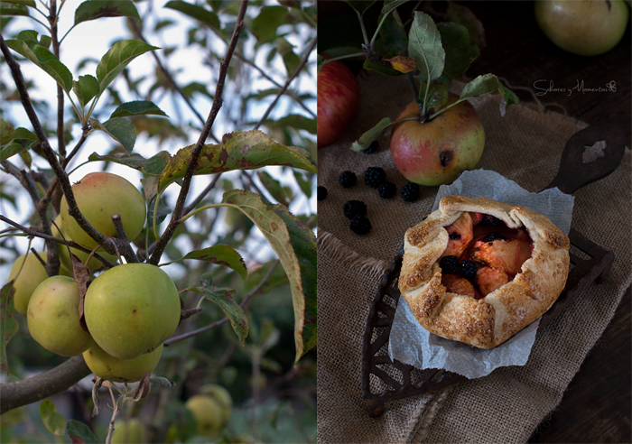 manzanas-golden-para-una-galette