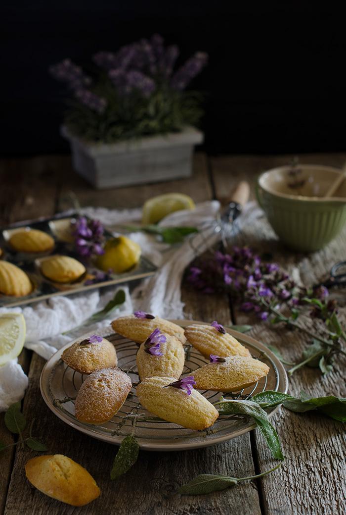 Madeleines-receta-francesa
