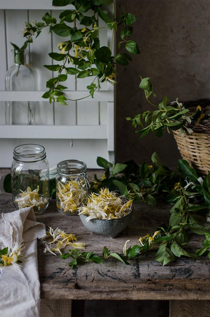 flores-de-Madreselva